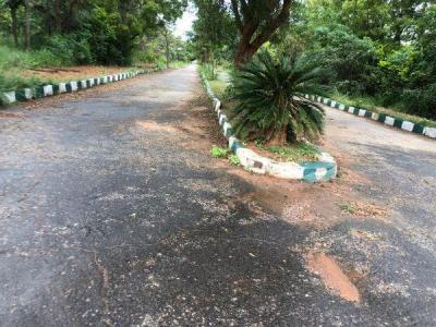 1200 Sq.ft Residential Plot for Sale in Aralasandra, Bangalore