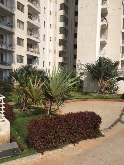Building Image of 1680 Sq.ft 3 BHK Apartment for rent in J. P. Nagar for 35000