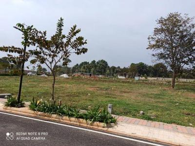 1200 Sq.ft Residential Plot for Sale in Nagegowdanapalya, Bangalore