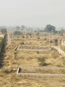 945 Sq.ft Residential Plot for Sale in Keshwana Rajput, Neemrana