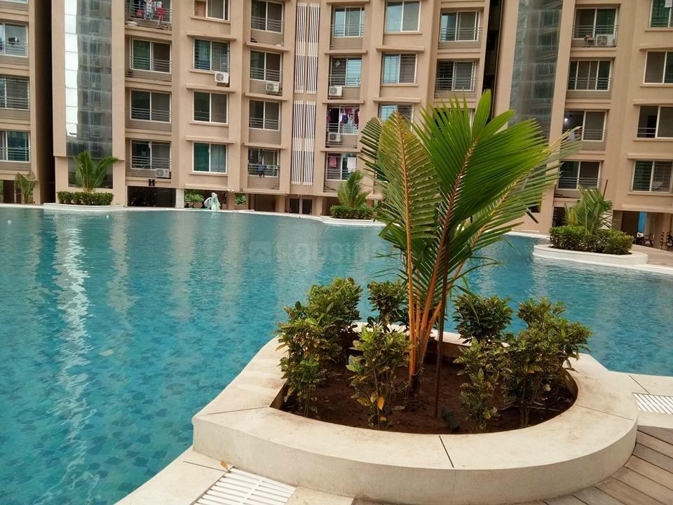 Swimming Pool Image of 602 Sq.ft 1 BHK Apartment for rent in Malad West for 32000