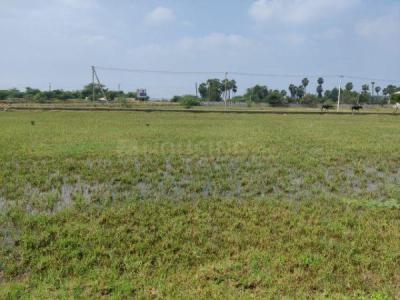 3825 Sq.ft Residential Plot for Sale in Balarama Nagar, नेल्लोरे