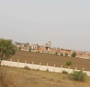 Gallery Cover Image of 720 Sq.ft Residential Plot for buy in Sector 137 for 880000