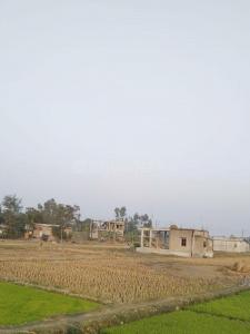 4000 Sq.ft Residential Plot for Sale in Kalarait, Kolkata