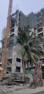 Gallery Cover Image of 475 Sq.ft 1 BHK Apartment for buy in Parel for 10500000