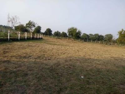 Gallery Cover Image of  Sq.ft Residential Plot for buy in Waghodia for 350000