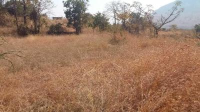 Gallery Cover Image of  Sq.ft Residential Plot for buy in Hinjewadi for 6350000