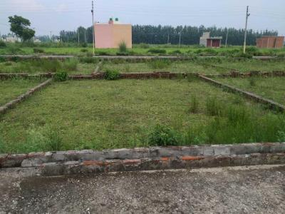 1125 Sq.ft Residential Plot for Sale in Bahadarabad, Haridwar