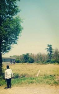 2080 Sq.ft Residential Plot for Sale in Mothrowala, Dehradun