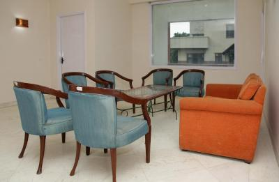 Living Room Image of PG 4643234 Sector 24 in DLF Phase 3