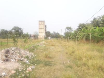 Gallery Cover Image of  Sq.ft Residential Plot for buy in Joka for 150000