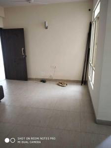Gallery Cover Image of 375 Sq.ft 1 RK Apartment for rent in PI Greater Noida for 9000