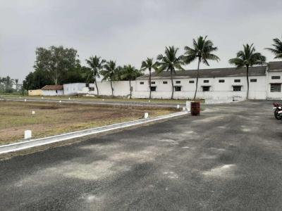 Gallery Cover Image of  Sq.ft Residential Plot for buy in Ganapathy for 1050000