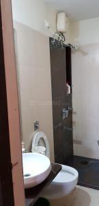 Bathroom Image of PG 7130375 Andheri West in Andheri West