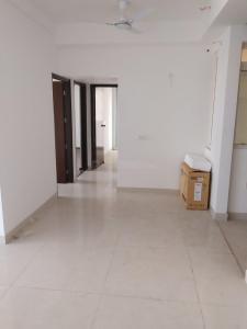 Gallery Cover Image of 1350 Sq.ft 3 BHK Apartment for rent in Aakriti Shantiniketan, Sector 143B for 17000