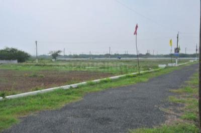1296 Sq.ft Residential Plot for Sale in Buranpur, Nellore