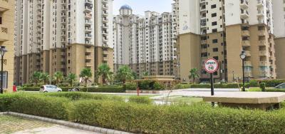 Gallery Cover Image of 835 Sq.ft 2 BHK Apartment for buy in Noida Extension for 3400000