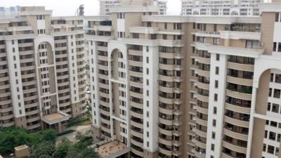 Gallery Cover Image of 2450 Sq.ft 3 BHK Apartment for buy in Vipul Belmonte, Sector 53 for 32000000