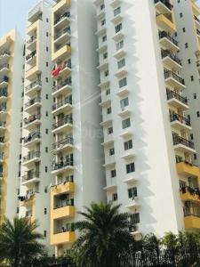 Gallery Cover Image of 1250 Sq.ft 2 BHK Apartment for rent in Vaibhav Khand for 13000
