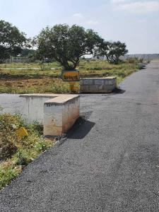 1500 Sq.ft Residential Plot for Sale in Bidrahalli, Bangalore