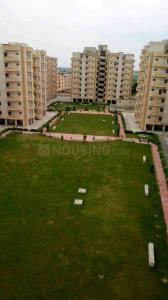 Gallery Cover Image of 1100 Sq.ft 3 BHK Apartment for rent in NBCC Town, Hasanpur Masoori for 8000