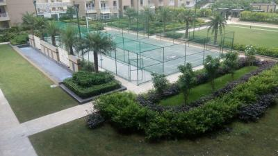 Gallery Cover Image of 1725 Sq.ft 3 BHK Apartment for buy in Ajnara Daffodil, Sector 137 for 9500000