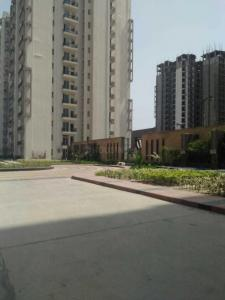 Gallery Cover Image of 590 Sq.ft 1 BHK Apartment for rent in Sector 143B for 10000