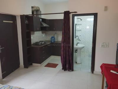 Gallery Cover Image of 1000 Sq.ft 1 BHK Independent House for rent in Sector 46 for 13000