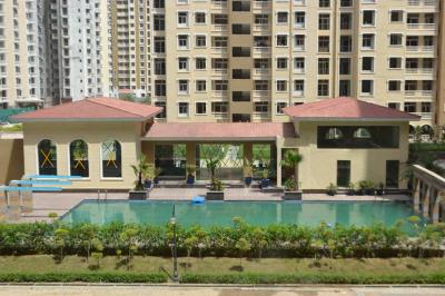 Gallery Cover Image of 1185 Sq.ft 2 BHK Apartment for rent in Amrapali Silicon City, Sector 76 for 13000
