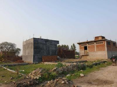 Gallery Cover Image of 1350 Sq.ft Residential Plot for buy in Sector 137 for 1800000