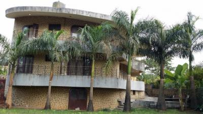 Gallery Cover Image of 8000 Sq.ft 5+ BHK Independent House for buy in Pangoli for 100000000