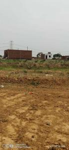 450 Sq.ft Residential Plot for Sale in Badarpur, New Delhi