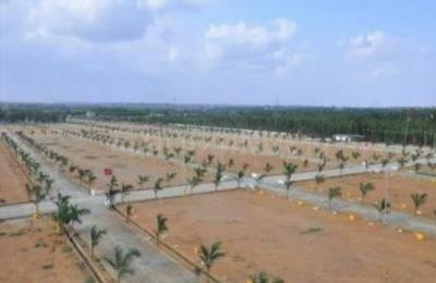 139 Sq.ft Residential Plot for Sale in Shamirpet, Hyderabad
