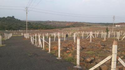 1000 Sq.ft Residential Plot for Sale in Ambegaon Budruk, Pune