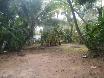 2000 Sq.ft Residential Plot for Sale in Kanjikode, Palakkad
