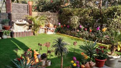 Garden Area Image of Arun Sharma in Palam Vihar