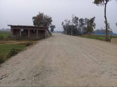 900 Sq.ft Residential Plot for Sale in Phulwari Sharif, Patna