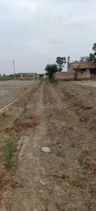5000 Sq.ft Residential Plot for Sale in Sherpur , Faridabad