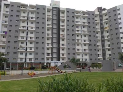 Gallery Cover Image of 996 Sq.ft 2 BHK Apartment for rent in Kondhwa Budruk for 12000