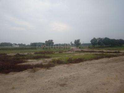 600 Sq.ft Residential Plot for Sale in Nirala Nagar, Lucknow