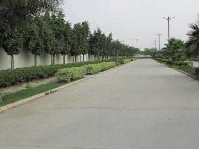 258 Sq.ft Residential Plot for Sale in Sector 99, Gurgaon
