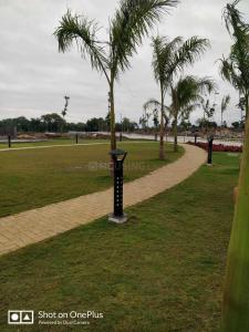 1200 Sq.ft Residential Plot for Sale in Amanaka, Raipur