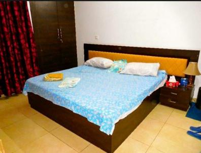 Gallery Cover Image of 1200 Sq.ft 3 BHK Independent Floor for rent in Chhattarpur for 20000