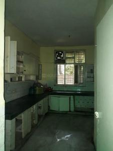 Kitchen Image of Karan PG in Sector 11