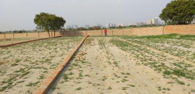 Gallery Cover Image of 900 Sq.ft Residential Plot for buy in Sector 115 for 1100000