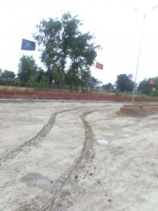 Gallery Cover Image of  Sq.ft Residential Plot for buy in Chinhat Tiraha for 500000