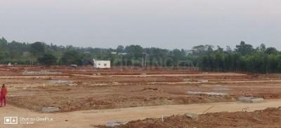 1350 Sq.ft Residential Plot for Sale in Marsur, Bangalore