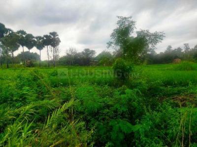 10000 Sq.ft Residential Plot for Sale in Edayankattuvalasu, Erode