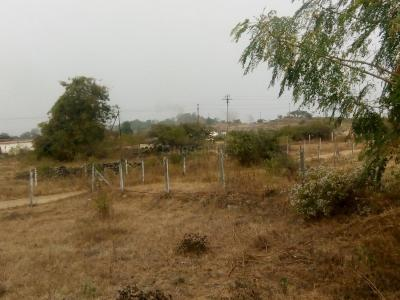 11000 Sq.ft Residential Plot for Sale in Sus, Pune