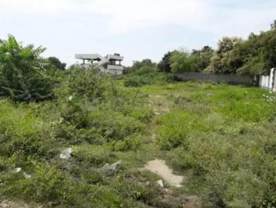 Gallery Cover Image of  Sq.ft Residential Plot for buy in Chaitanyapuri Colony for 2400000